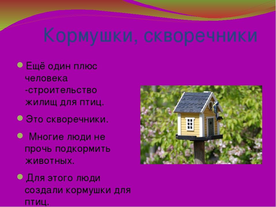 Кормушки, скворечники Ещё один плюс человека -строительство жилищ для птиц....