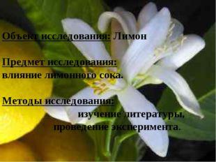 Объект исследования: Лимон Предмет исследования: влияние лимонного сока. Мето