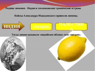Родина лимонов - Индия и тихоокеанские тропические острова. Войска Александр