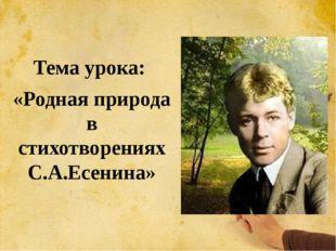 Тема урока: «Родная природа в стихотворениях С.А.Есенина»