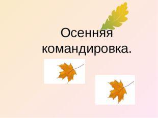 Осенняя командировка.