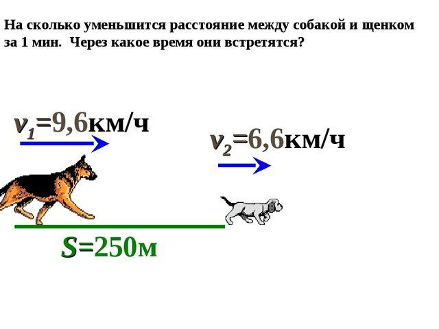 На сколько уменьшится расстояние между собакой и щенком за 1 мин. Через какое...