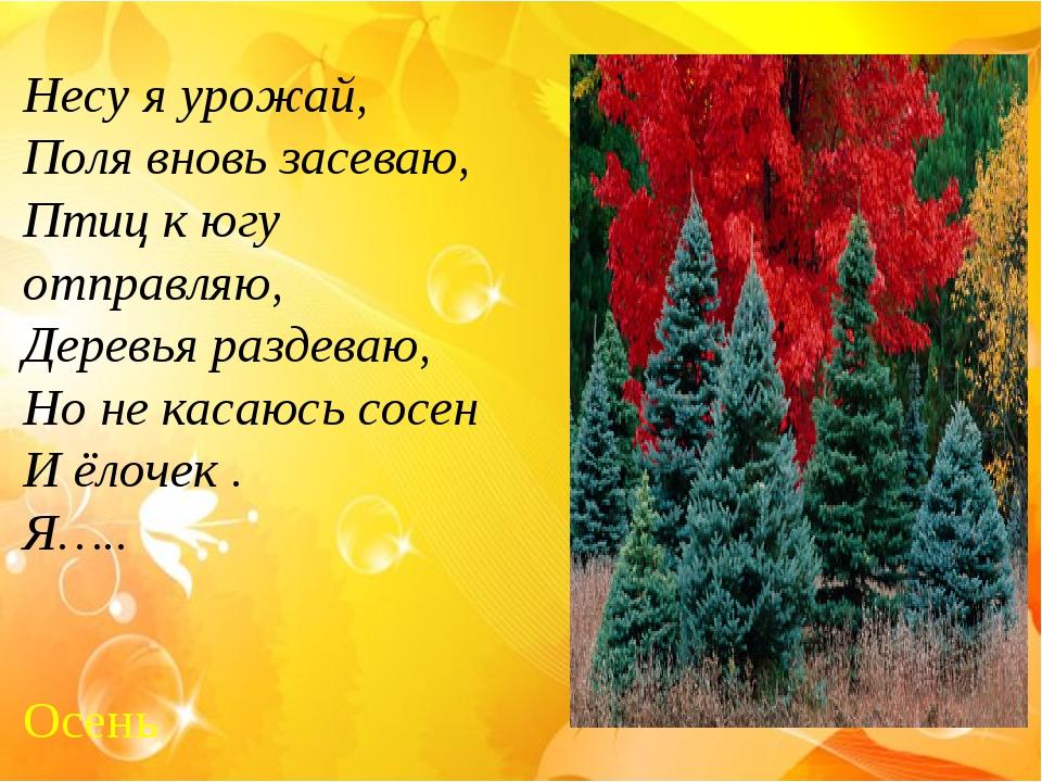Несу я урожай, Поля вновь засеваю, Птиц к югу отправляю, Деревья раздеваю, Но...