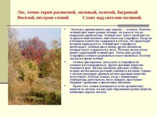 Лес, точно терем расписной, лиловый, золотой, багряный Весёлой, пёстрою стено