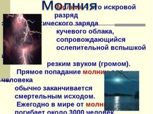 Молния – это искровой разряд электростатического заряда кучевого облака, соп
