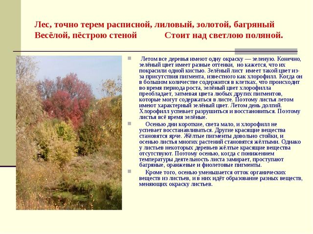 Лес, точно терем расписной, лиловый, золотой, багряный Весёлой, пёстрою стено...