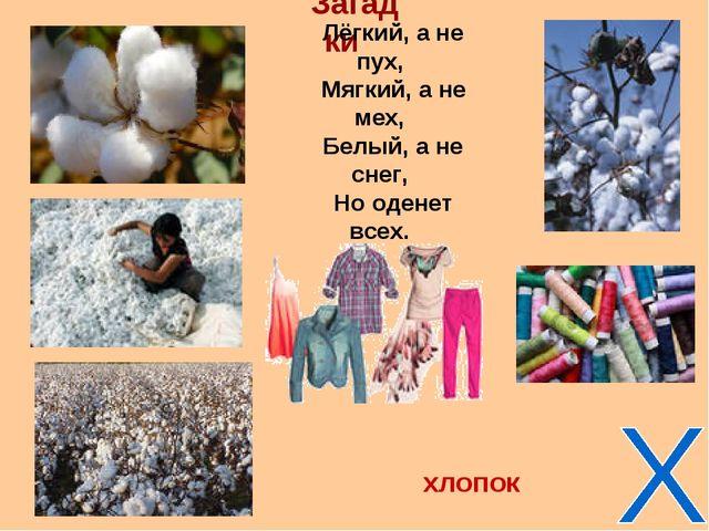Загадки Лёгкий, а не пух, Мягкий, а не мех, Белый, а не снег, Но оденет всех....