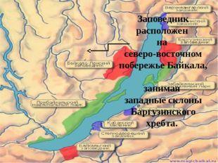 Заповедник расположен на северо-восточном побережье Байкала, занимая западные