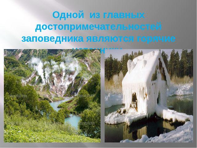Одной из главных достопримечательностей заповедника являются горячие источники.