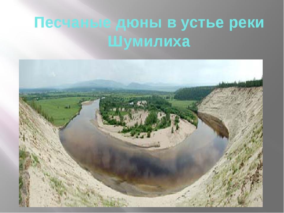 Песчаные дюны в устье реки Шумилиха