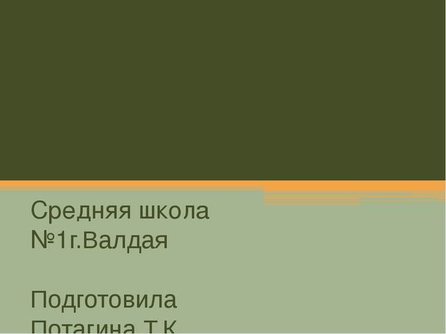 Школьная документация Средняя школа №1г.Валдая Подготовила Потагина Т.К.