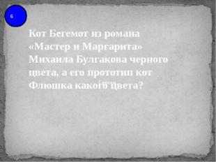 6 Кот Бегемот из романа «Мастер и Маргарита» Михаила Булгакова черного цвета,