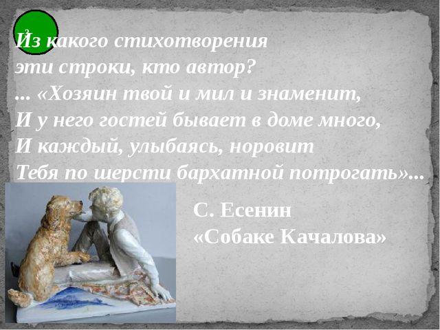 3 Из какого стихотворения эти строки, кто автор? ... «Хозяин твой и мил и зна...