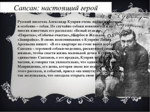 Сапсан: настоящий герой Русский писатель Александр Куприн очень любил животны