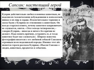 Сапсан: настоящий герой Куприн действительно любил и понимал животных, не над