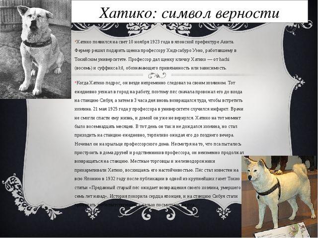 Хатико: символ верности Хатико появился на свет 10 ноября 1923 года в японско...