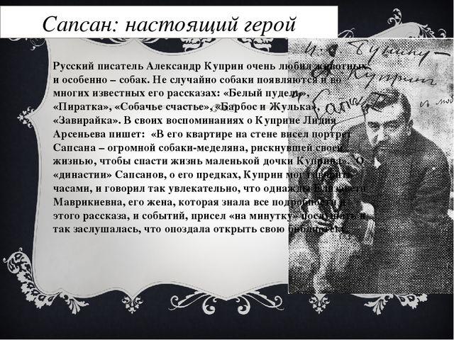Сапсан: настоящий герой Русский писатель Александр Куприн очень любил животны...