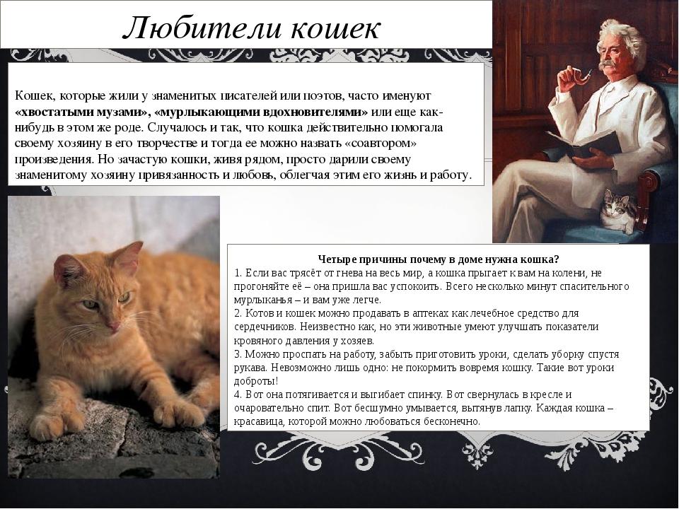 Любители кошек Кошек, которые жили у знаменитых писателей или поэтов, часто и...