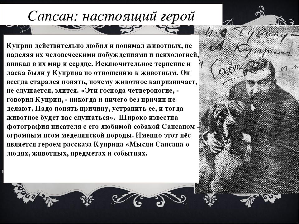 Сапсан: настоящий герой Куприн действительно любил и понимал животных, не над...