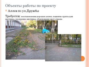 Объекты работы по проекту Аллея по ул.Дружбы Требуется: восстановления дорожк
