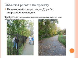 Объекты работы по проекту Пешеходный тротуар по ул.Дружбы, спортивная площадк
