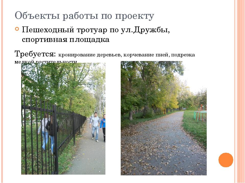Объекты работы по проекту Пешеходный тротуар по ул.Дружбы, спортивная площадк...