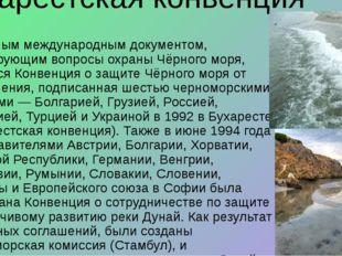 Бухарестская конвенция Основным международным документом, регулирующим вопрос