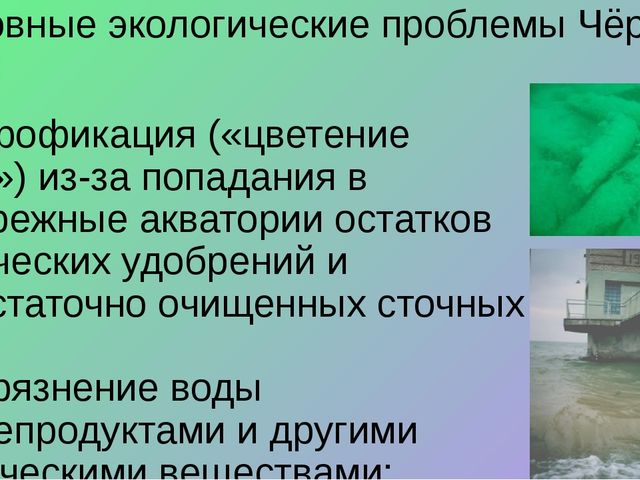 Основные экологические проблемы Чёрного моря: • эвтрофикация («цветение воды...