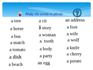 Make the words in plural. a tree a horse a bus a match a tomato a dish a beac
