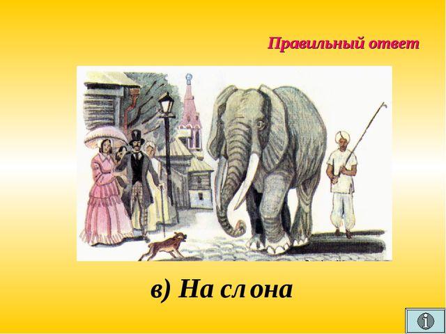 Правильный ответ в) На слона