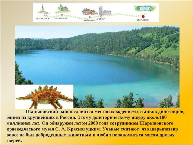 Шарыповский район славится местонахождением останков динозавров, одним из кр...