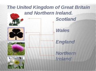 Scotland Wales England Northern Ireland The United Kingdom of Great Britain a