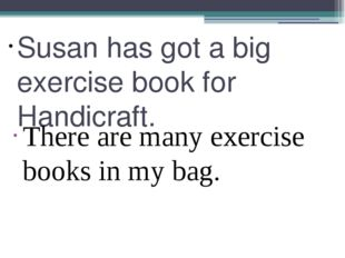 Susan has got a big exercise book for Handicraft. There are many exercise boo