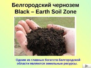 Белгородский чернозем Black – Earth Soil Zone Одним из главных богатств Белго