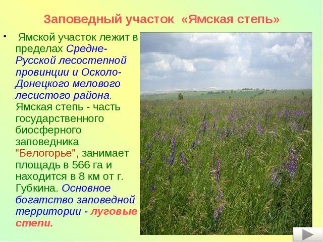 Ямской участок лежит в пределах Средне-Русской лесостепной провинции и Оскол...