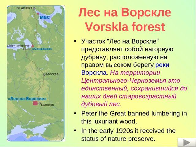"""Лес на Ворскле Vorskla forest Участок """"Лес на Ворскле"""" представляет собой наг..."""