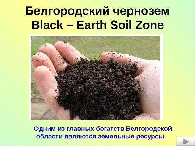 Белгородский чернозем Black – Earth Soil Zone Одним из главных богатств Белго...