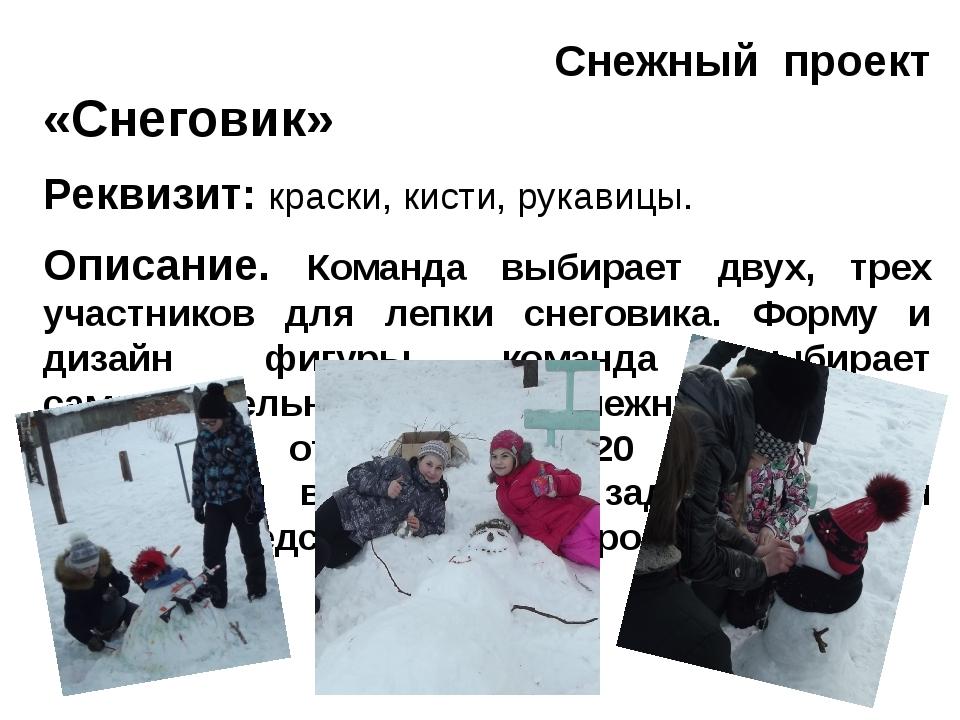 Снежный проект «Снеговик» Реквизит: краски, кисти, рукавицы. Описание. Коман...