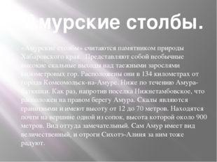 Амурские столбы. «Амурские столбы» считаются памятником природы Хабаровского