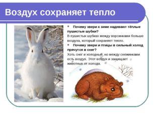 Воздух сохраняет тепло Почему звери к зиме надевают тёплые пушистые шубки? В