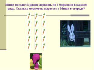 Миша посадил 5 рядов моркови, по 3 морковки в каждом ряду. Сколько морковок в
