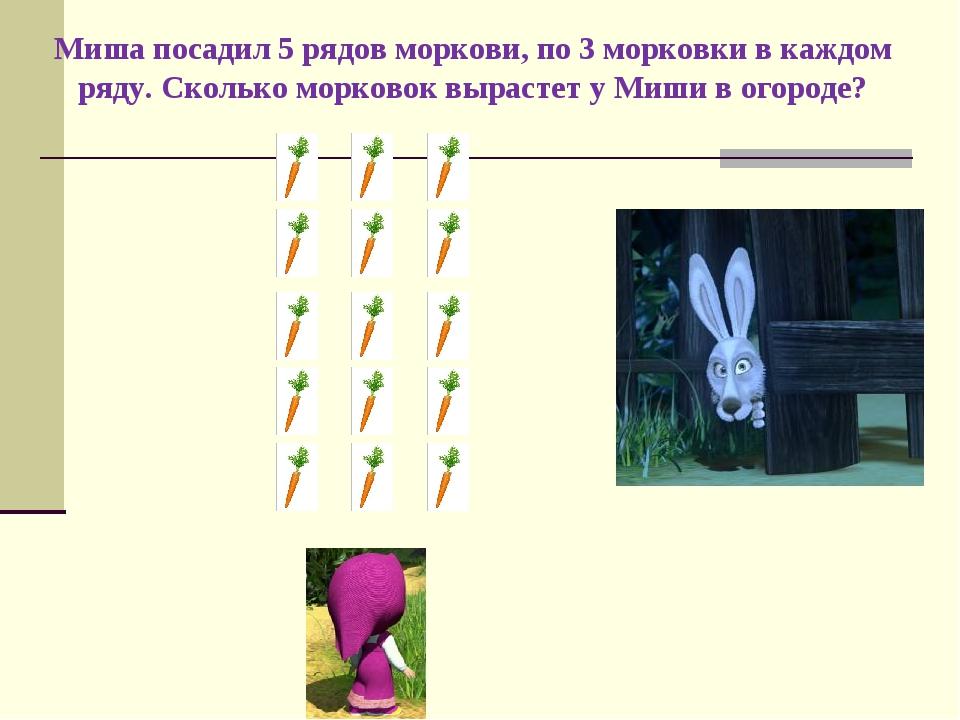 Миша посадил 5 рядов моркови, по 3 морковки в каждом ряду. Сколько морковок в...