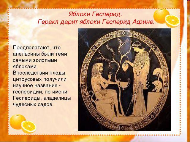 Яблоки Гесперид. Геракл дарит яблоки Гесперид Афине. Предполагают, что апель...