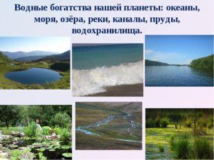 Водные богатства нашей планеты: океаны, моря, озёра, реки, каналы, пруды, вод