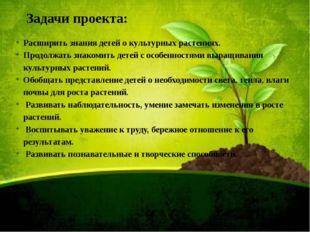 Задачи проекта: Расширить знания детей о культурных растениях. Продолжать зна