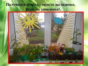 , Получился огород – просто загляденье, Всем на удивленье!.