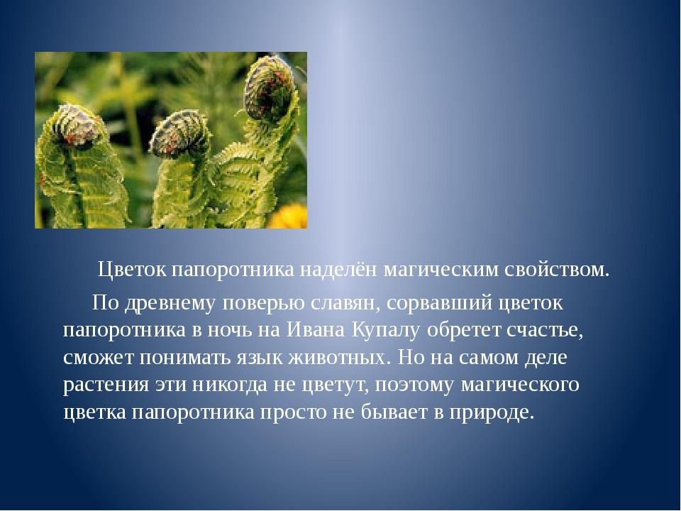 Цветок папоротника наделён магическим свойством. По древнему поверью славян,...