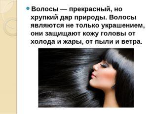 Волосы — прекрасный, но хрупкий дар природы. Волосы являются не только украше