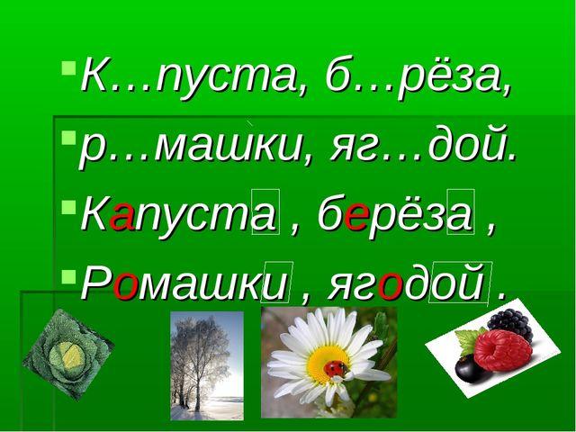 К…пуста, б…рёза, р…машки, яг…дой. Капуста , берёза , Ромашки , ягодой .
