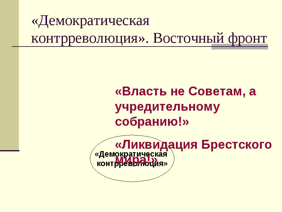 «Демократическая контрреволюция». Восточный фронт «Демократическая контрревол...